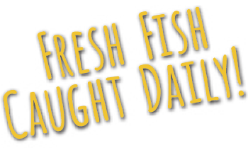 fresh fish caught daily!